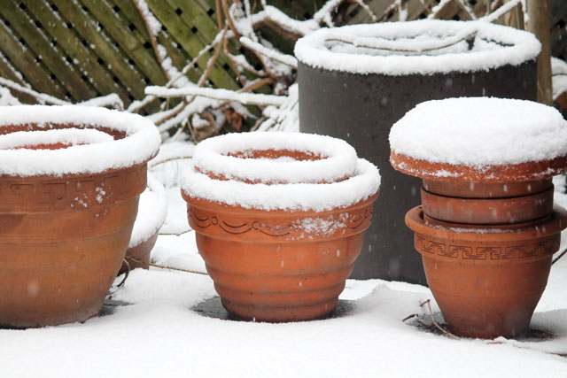 plant-pots-in-the-snow