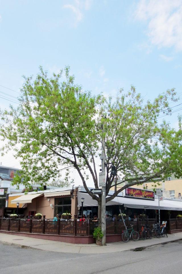 amadeu-restaurant-kensington-market-toronto