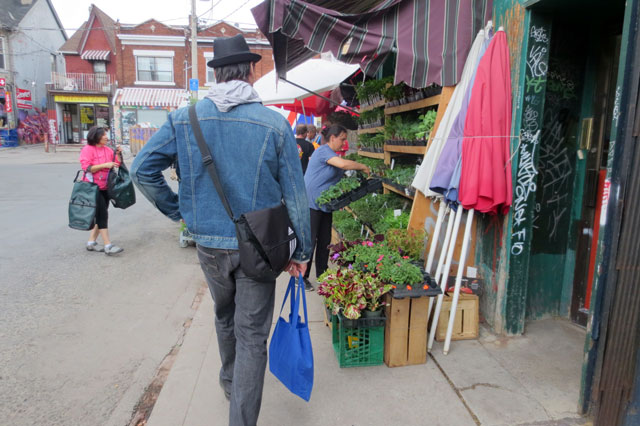 getting-herb-plants-in-kensington-market-01