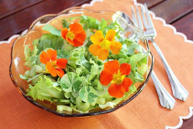 salad-with-flowers-in-it-nasturtiums-03