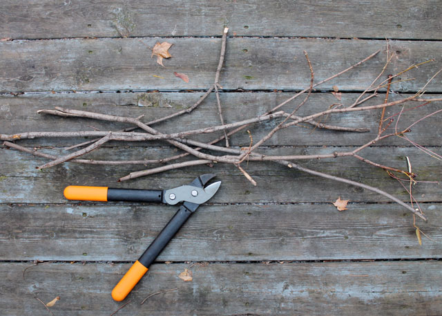 cutting-branches-to-make-place-card-holders