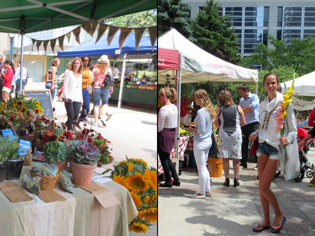 flowers-at-downtown-toronto-farmers-market