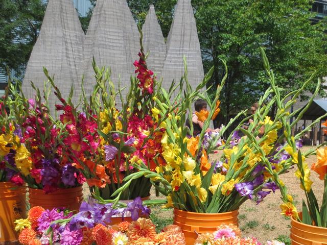 flowers-for-sale-farmers-market-downtown-toronto