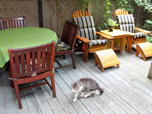 deck-before-guest-arrive