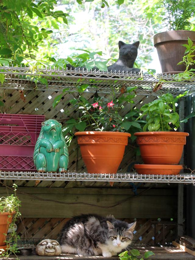 outdoor-shelf