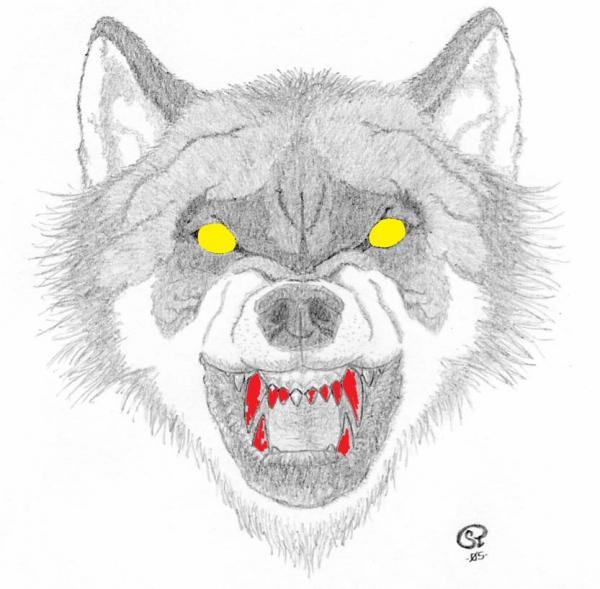 combattre-pour-loup