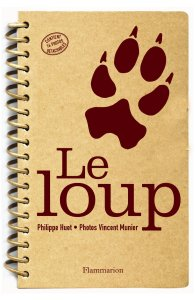 pays-reel-aime-loup