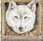 museoloups-loup