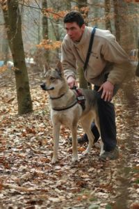 relation-chien-loup-humain