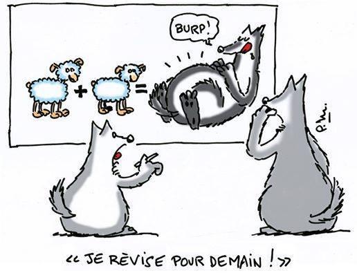 rentree-classes-pour-loup