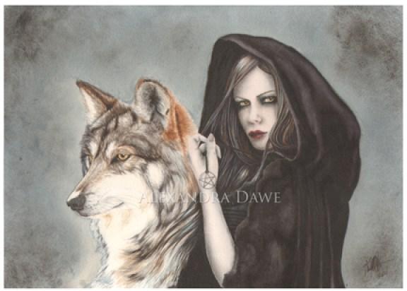 loup-dessin-alexandra-dawe