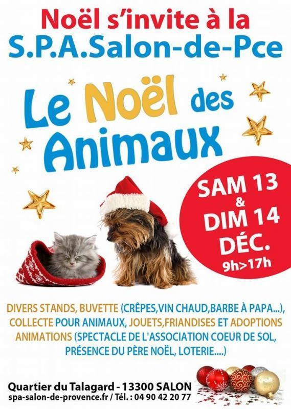 Noël des Animaux les 13 et 14 décembre 2014 à la SPA de Salon de Provence
