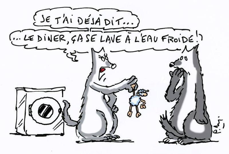 humour-lupin-8