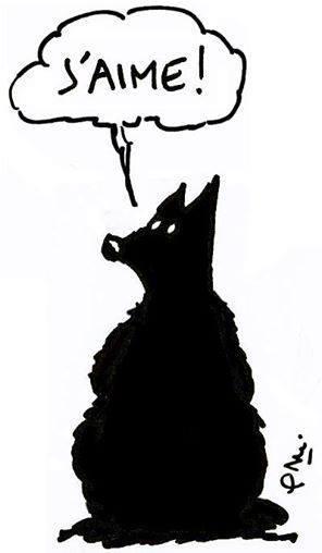dessinateur-petits-loups-rejoint-klan-loup