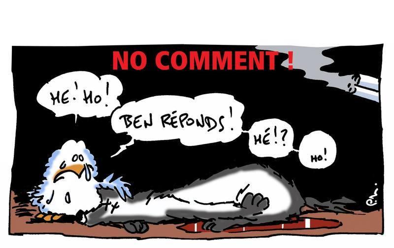 mort-suspecte-louve