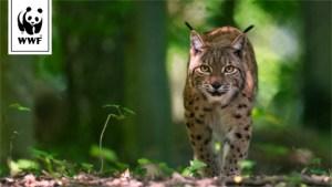 [Suisse] Référendum pour la biodiversité