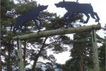parc-loups-gevaudan