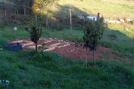 veggiegarden09-3