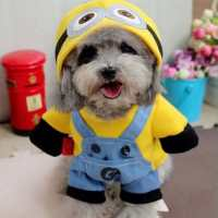Epic Dog Halloween Costumes + Ideas | Love Ambie