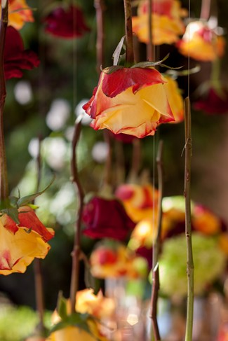 Red Rose Styled Wedding Shoot at Franciscan Gardens