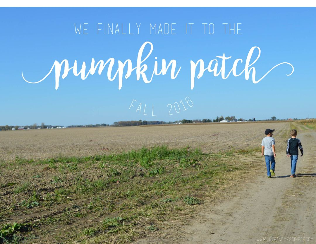 Fall 2016: We Finally Made it to the Pumpkin Patch!