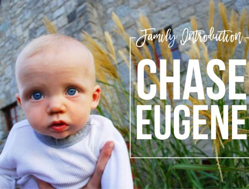 Family Introduction: Chase Eugene | loveandmessiness.com
