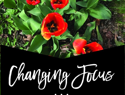 Changing Focus: Becoming a Positive Mom