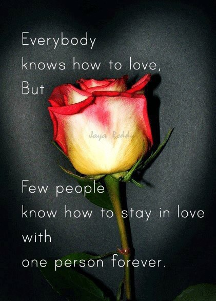 Everybody Knows HOw TO Love But ...