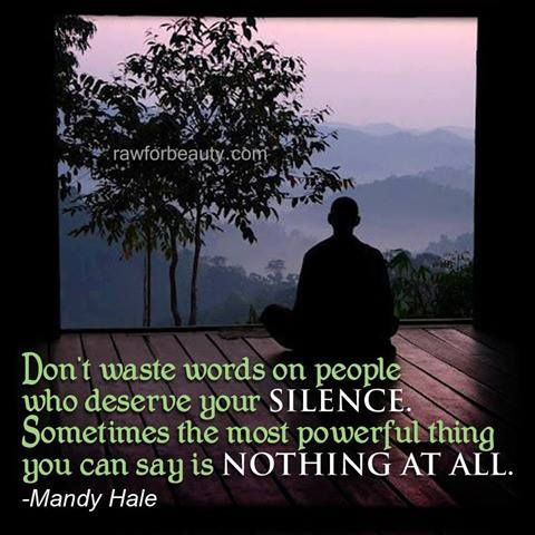 Don't Waste Words on people Who Deserve your Silence