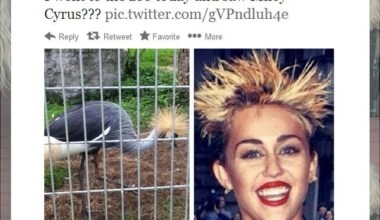 Miley Cyrus, Is That You