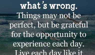 Things May Not Be Perfect