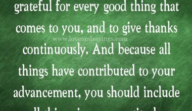 The habit Of Being Grateful for every good thing That come to you