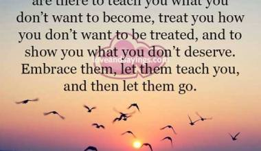 Let them teach you and then let them go