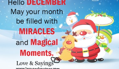 Miracles and magical moments