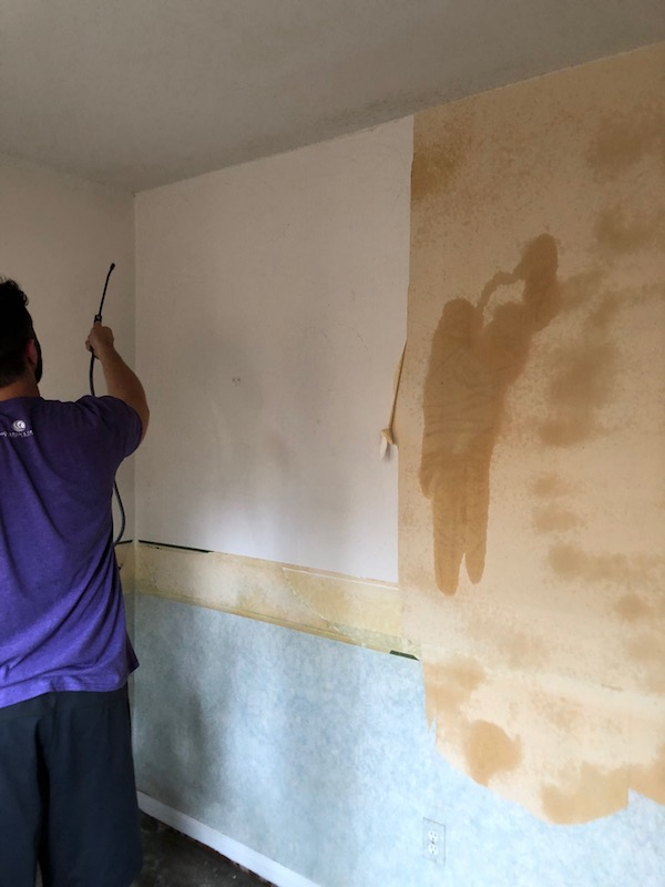 How To Remove Wallpaper - DIY 8