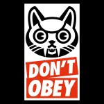 v21 Dont obey – hoodie – white
