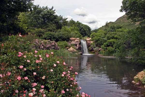 Free Admission Days In Utah For Hogle Zoo Living Planet Aquarium