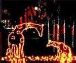 Utah Christmas Lights Displays and FREE Places to Visit 2012