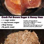 Slow Cooker Brown Sugar Honey Ham Recipe