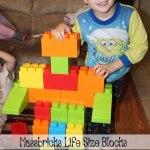Massbricks Life Size Blocks by Platports Review