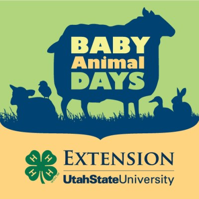 Baby Animal Days in Kaysville, UT on May 9-10, 2014