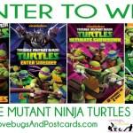 GIVEAWAY: Enter to win Nickelodeon Spring Break DVD's! (Set of Teenage Mutant Ninja Turtles, Legend of Korra, and SpongeBob) 3 Winners. Ends 4/7.