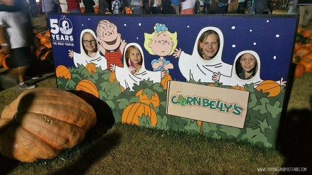 Cornbelly's Corn Maze at Thanksgiving Point