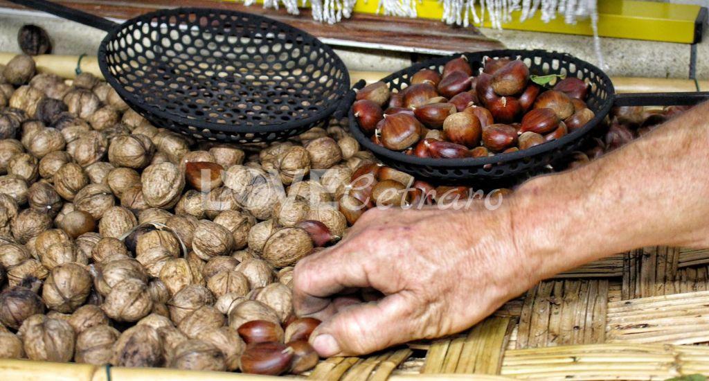 ruselli-castagne-caldarroste-calabria-love-cetraro-11