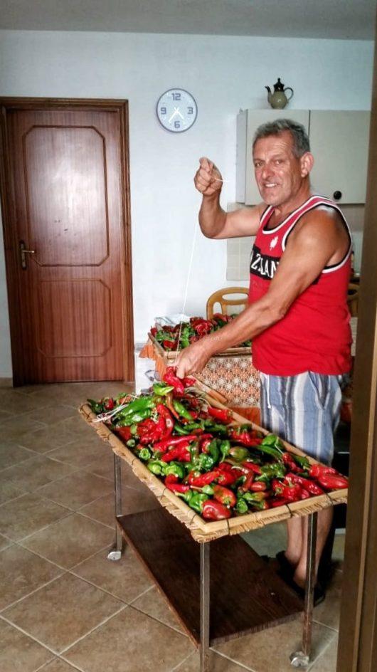 papà-agricoltore-contadino-calabria (25)