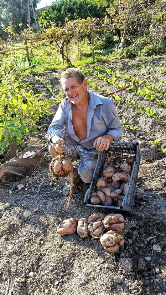 papà-agricoltore-contadino-calabria (28)
