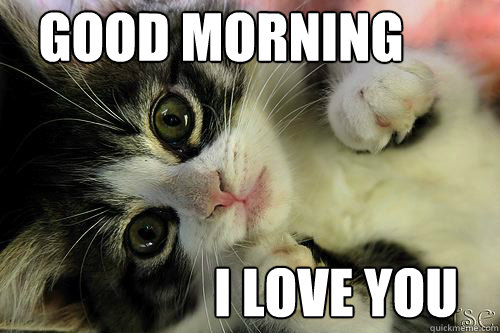 Funny Good Morning Love Pictures 7 - I Love You Memes For Her | I Love You Memes for Him