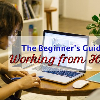 The Beginner's Guide to Working from Home