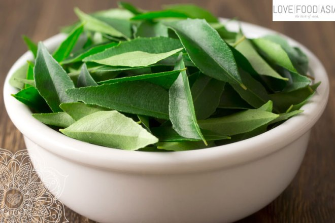 Curry Leaves (Murraya koenigii)