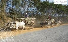 Auf den Straßen von Myanmar